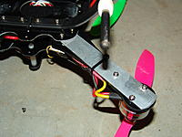 Name: DSC05505.jpg