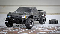 Name: Raptor-005.jpg
