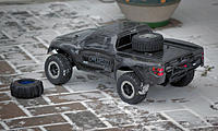 Name: Raptor-008.jpg