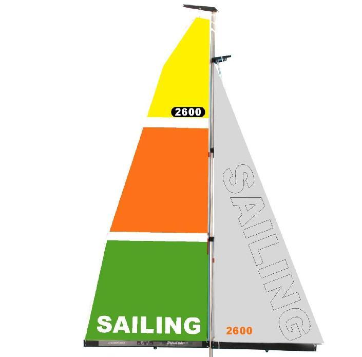 Name: Sail Bags by Ace Wing Carrier.jpg