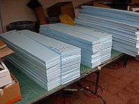 Name: Shrike wing cores.jpg