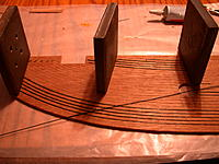Name: DSCN4635.jpg