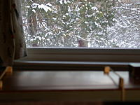Name: DSCN5230.jpg