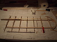 Name: P6202025.jpg
