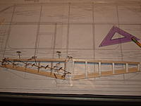 Name: P8072062.jpg