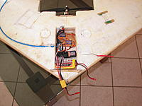 Name: 100_6592.jpg
