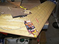 Name: 100_6615.jpg