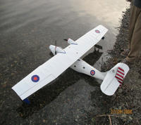 Name: ledrew_minicat.jpg