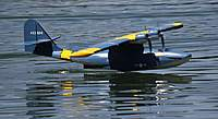 Name: carlos_cat.jpg