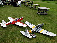 Name: Chipmunk2.jpg