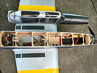 Name: Chipmunk7.jpg