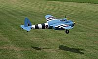 Name: martin_mosquito.jpg