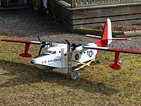 Name: ivve_albatross.jpg