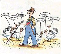 Name: blind-turkey-farmer.jpg