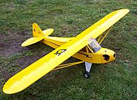 Name: piper1.jpg