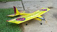 Name: Ugly  stick Yellow 5.jpg