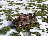 Name: tiger1 003.jpg