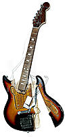 Name: 20090119175753!Smashed_guitar.jpg