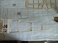 Name: DSC00517.jpg