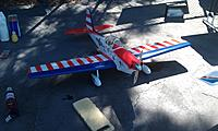 Name: Chimp 1.jpg