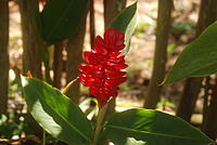 Name: Vacation 228.jpg
