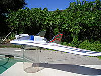 Name: My new Xeno flying Wing 006.jpg