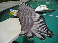 Name: My Eagle 006.jpg