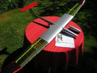 Name: Quant  Glider and Ava Electric Glider 004.jpg