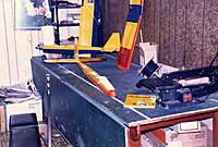 Name: Bridi Big Birdy0001.jpg