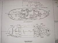 Name: WYTL  C 2.jpg