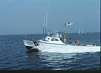 Name: 40375.jpg
