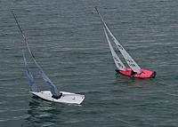 Name: P1040700red.jpg