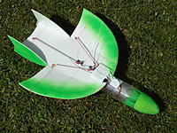 Name: SAM_3484.jpg