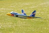 Name: flying Raptor nr3.jpg