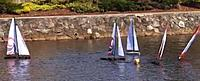 Name: penguinmark1_20130210.jpg