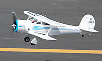 Name: Beech 5.jpg
