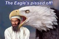 Name: eagle.jpg