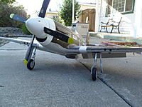 Name: P1030976.jpg