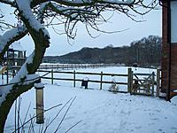 Name: Snow Jan 2013 001.jpg
