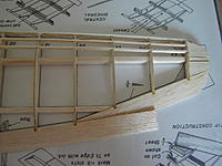Name: DSC08860.jpg
