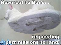 Name: hovercat.jpg