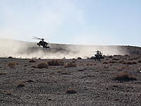 Name: DSCF3101.jpg