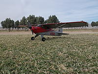 Name: DSCF2623.jpg