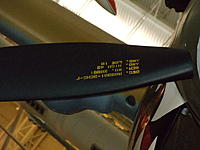 Name: DSC01411.jpg
