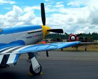 Name: BeautyAndYak.JPG