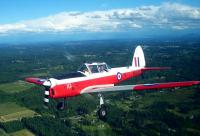 Name: DHC1_Chipmunk.JPG