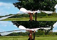 Name: Marcialtech 2014 Aug Upstroke.jpg Views: 59 Size: 237.9 KB Description: 3rd Gen. Wing-B  , upstroke