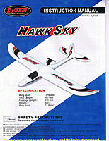 Name: Hawk Sky.jpg