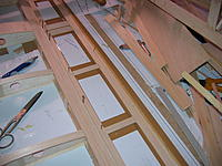 Name: IMG_8096.jpg