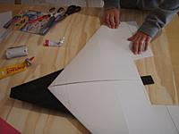 Name: Wing flolded.jpg